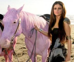 selena gomez, horse, and selena image