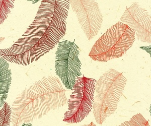 background, wallpaper, and feathers image