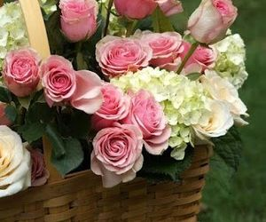 flowers, rose, and basket image