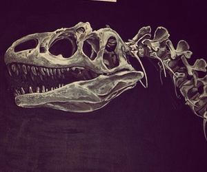 art, black, and dinosaur image