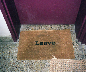 leave, photography, and funny image