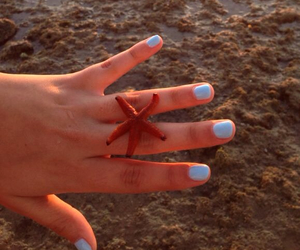 beach, star, and blue image