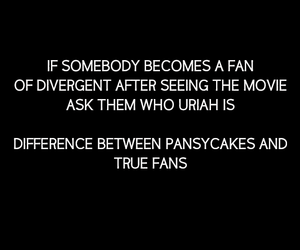 fans, movie, and divergent image