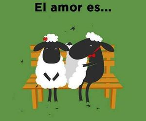 love and sheep image