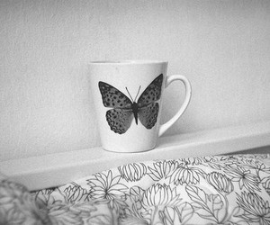 butterfly, cup, and black and white image