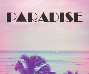beach, paradise, and pink image