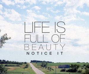 life, beauty, and quote image