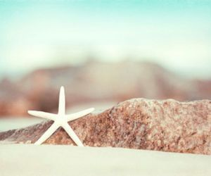 beach, summer, and star image