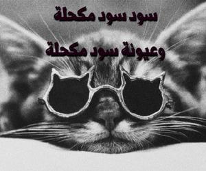 اغاني, بزونة, and عراقي image