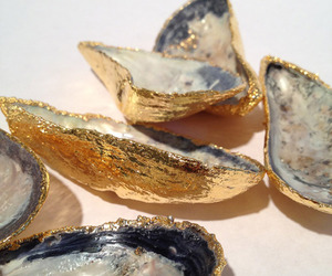 gold, mussels, and shell image
