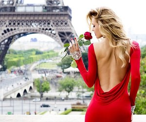 paris, red, and rose image