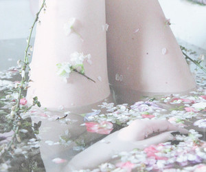 flowers, pale, and bath image