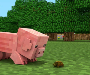 pig and minecraft image