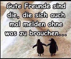 freunde, freundschaft, and love image