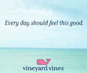 happy and vineyard vines image