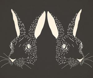art, rabbit, and black and white image