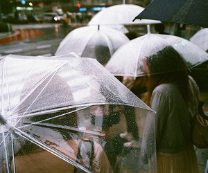 rain, umbrella, and vintage image