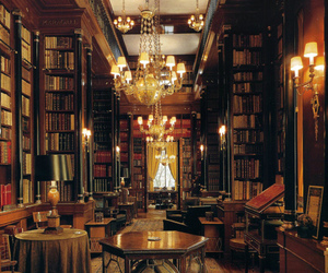 book, library, and interior image