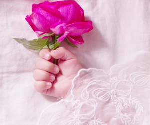 baby, pink, and rose image