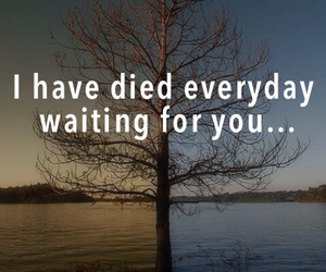 Died, quote, and song image