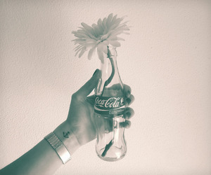 flowers and coke image