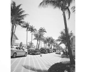 summer, california, and beach image