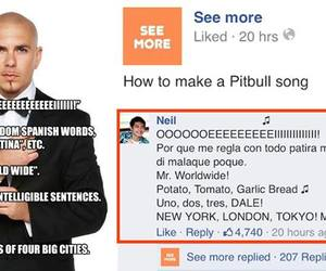 funny and pitbull image