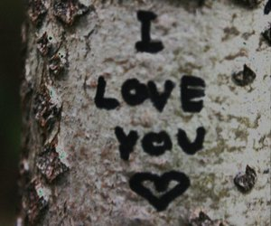 heart, text, and tree image