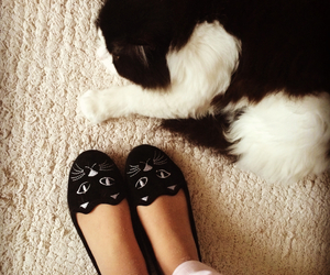 black, cat, and girly image