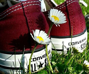 converse, all star, and daisies image