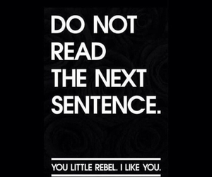 funny, i like you, and rebel image