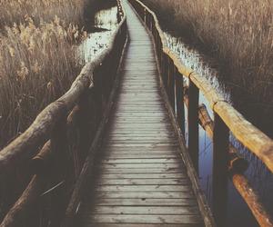 bridge, nature, and water image