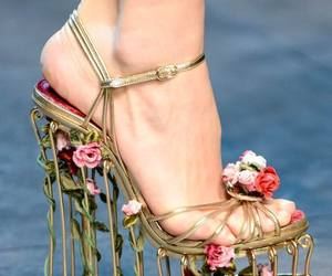 dolce gabbana, foot, and gold image