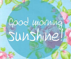flowers, good morning, and sunshine image