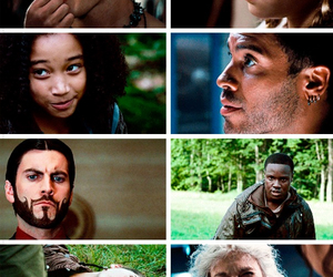 Clove, mags, and rue image