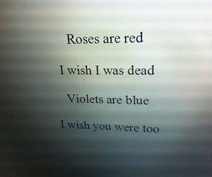 dead, roses, and quote image