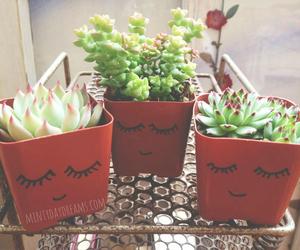 diy, plant, and retro image