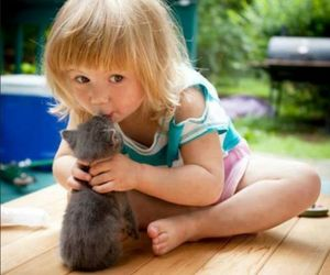 cat, kiss, and baby image