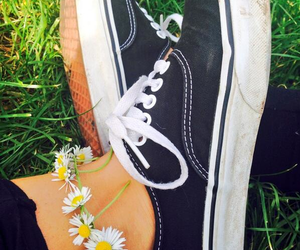 black and white, daisy, and shoes image