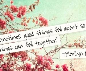 quote, Marilyn Monroe, and flowers image