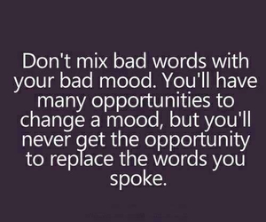 quote, words, and mood image