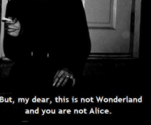 quote, wonderland, and alice image
