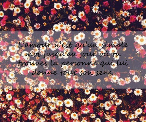amour, flowers, and quotes image