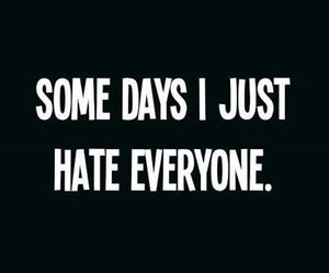 hate, quotes, and everyone image
