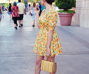 bag, delicate, and dress image