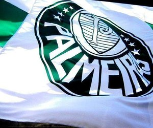 palmeiras, brazilian, and football image
