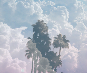 clouds, sky, and palm trees image