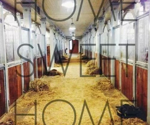 horse, home, and sweet image