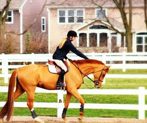 chestnut, equestrian, and girl image