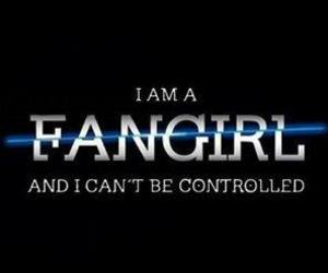 divergent, fangirl, and fandom image